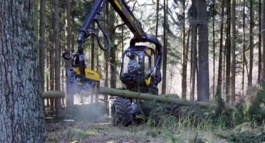 tree-cutting-machine